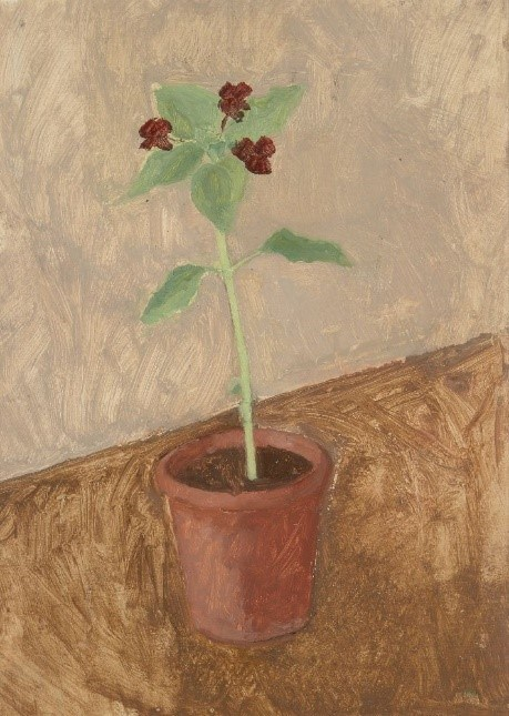 Patrick George, British b.1923- Plant in a pot, c.1970s; oil on board,